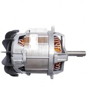 Moteur électrique GGP - CASTELGARDEN 118563640/0 - 18563640/0