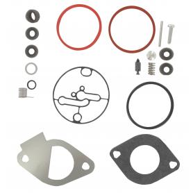 Kit de carburateur BRIGGS ET STRATTON 796184