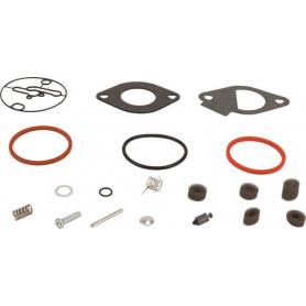 Kit de réparation carburateur BRIGGS ET STRATTON 796184