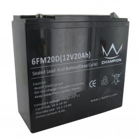 Batterie 12v 20ah MTD BAT0006A