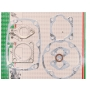Joints moteur ROBIN 106-99001-07 - 106-99001-08 - 1069900107 - 1069900108