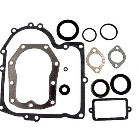 Joints moteur BRIGGS ET STRATTON 490525 - 494241