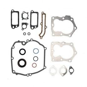 Joints moteur BRIGGS ET STRATTON 590508 - 493263 - 496117 - 794307 - 497316