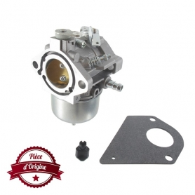 Carburateur BRIGGS ET STRATTON 698171 - 697594 - 698973