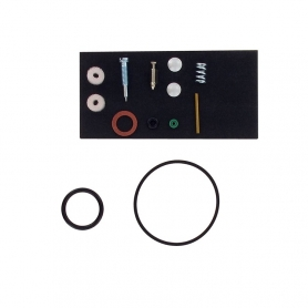 Kit réparation carburateur BRIGGS ET STRATTON 492077 - 494349