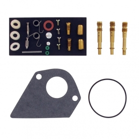Kit réparation carburateur BRIGGS ET STRATTON 499220