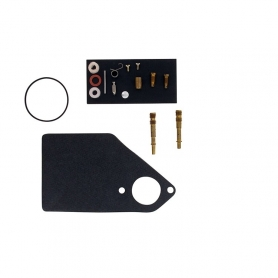Kit réparation carburateur BRIGGS ET STRATTON 497041 - 497578