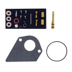 Kit réparation carburateur BRIGGS ET STRATTON 497481 - 496622
