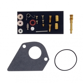 Kit réparation carburateur BRIGGS ET STRATTON 498116