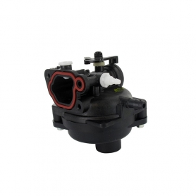 Carburateur BRIGGS ET STRATTON 591160 - 799583