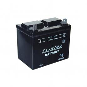 Batterie U1L7 - borne multiréversible