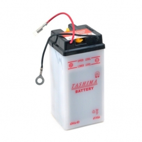 Batterie 6N4A4D + à droite