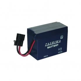 Batterie FBT19 pour  modèles TECUMSEH