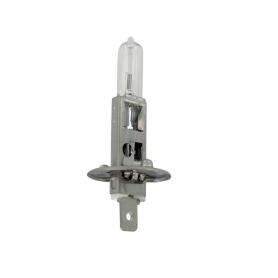 Ampoule halogène H1 UNIVERSELLE 12V - 55W