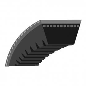 Courroie crantée Toro 110-1790 - 1101790