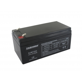 Batterie motoculture TASHIMA NP28-12 - NP32-12