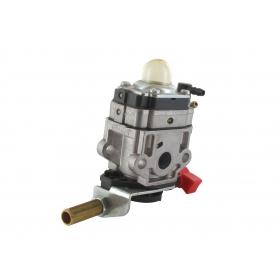 Carburateur GGP - CASTELGARDEN 123054009/1