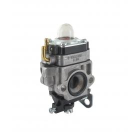 Carburateur GGP - CASTELGARDEN 123054025/1