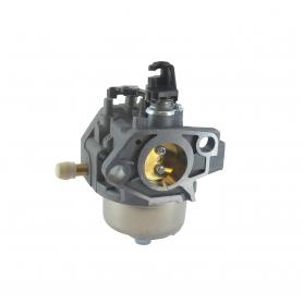 Carburateur GGP - CASTELGARDEN 118551393/0
