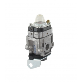 Carburateur GGP - CASTELGARDEN 123054026/1