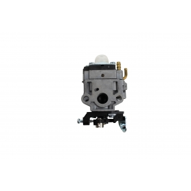 Carburateur GGP - CASTELGARDEN 123054036/0