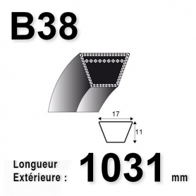 COURROIE B38 - TRAPÉZOIDALE 17 MM X 1031 MM