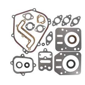 Pochette de joints moteur BRIGGS ET STRATTON 791797