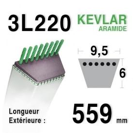 Courroie 3l22 - 9,5 mm x 559 mm