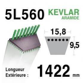 Courroie 5L560 - 5L56 WESTWOOD 2226